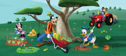 Pluto Daisy Donald & Goofy Panoramic mural wallpaper 202x90cm